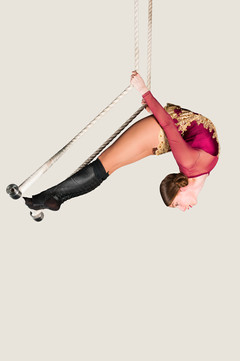 Trapeze circus melbourne.jpg