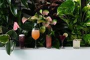 Lola Cocktails 02 - Sergey Kolivayko.JPG