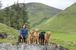 MAIKO AND PIPS DOGS SCOTLAND-0711.jpg