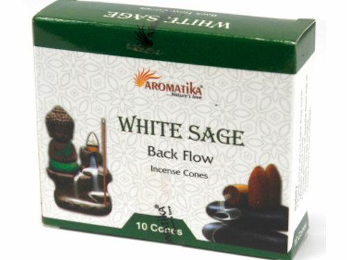 Backflow-White sage