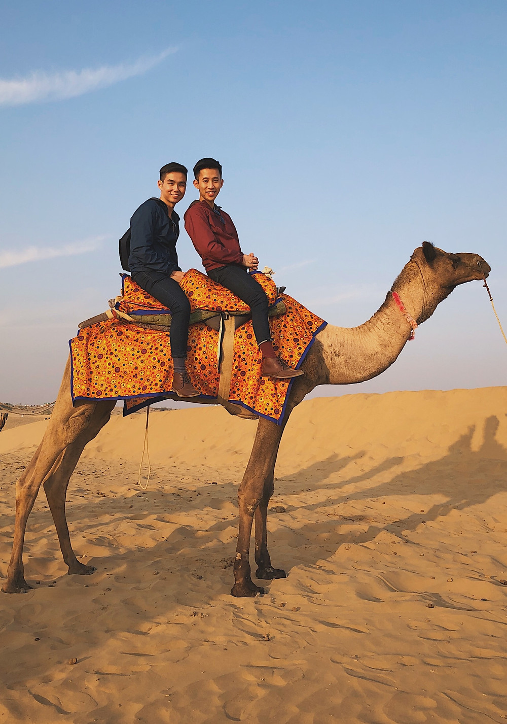 Camel ride at Sam Sand Dunes, near Jaisalmer, Rajasthan, India