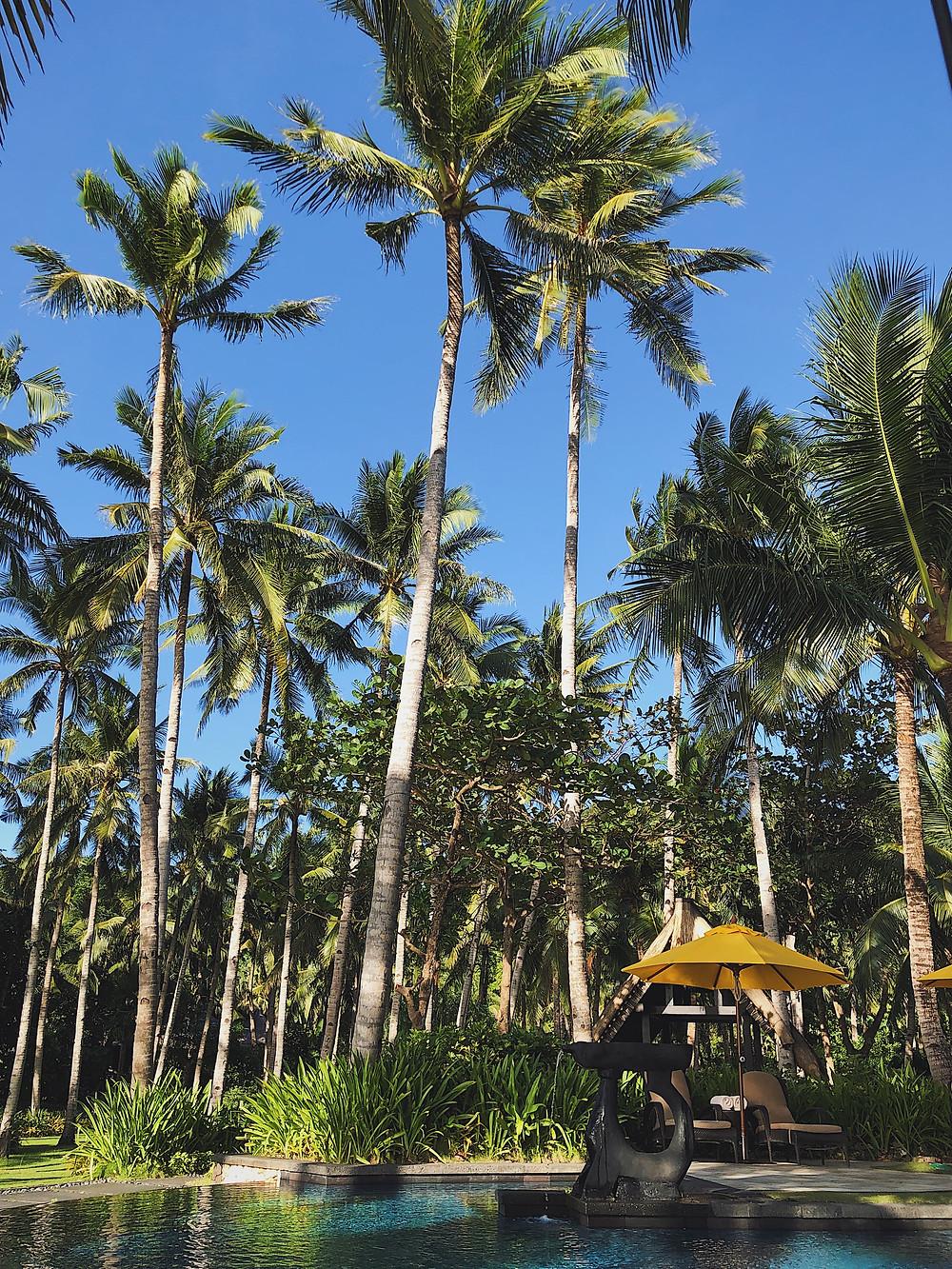 Shangri-La's Boracay infinity pool luxury