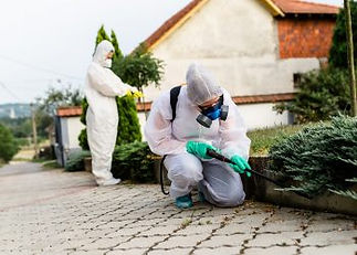 pest-control-contracts