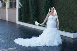 T Q Wedding-1031