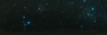 eagle-banner-estrelas.png
