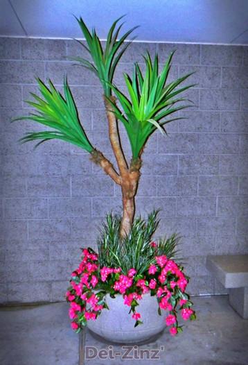 artificial-outdoor-yucca-in-break-area