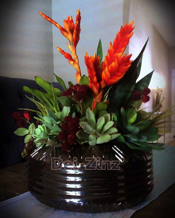 ginger with succulents arrangement
