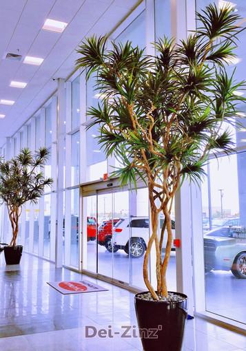 16-foot artificial dracaena marginata trees