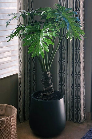 artificial philodendron selloum