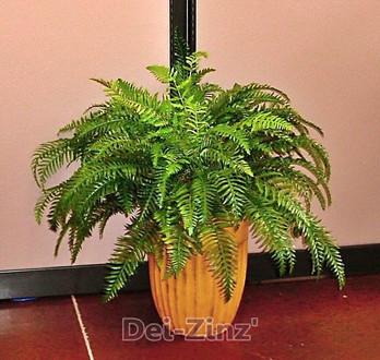 artificial-sword-fern-plant