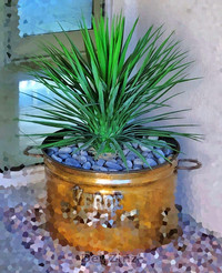 faux outdoor yucca succulent