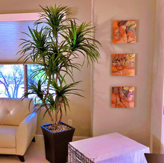 residential-marginata-with-wall-hangings