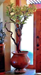 sillk tipped manzanita tree