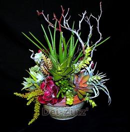 Succulent Bowl with Manzanita