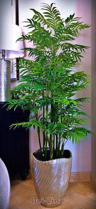 8-foot-bamboo-palm-in-modern-pot