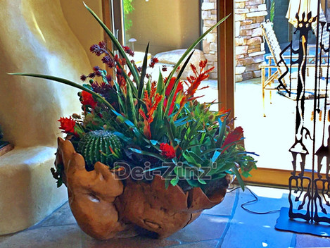 large succulent garden in wooden planter