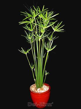 5-foot-faux-cypress-grass-plant