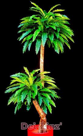 silk fern tree