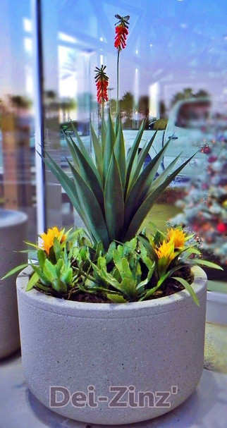 blooming artificial agave