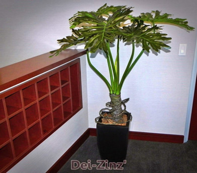 artificial-philodendron-commercial-space