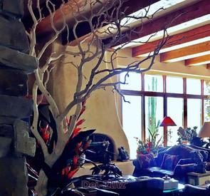 large-sand-blasted-manzanita-tree