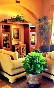 living-room-decorated-with-faux-botanicals