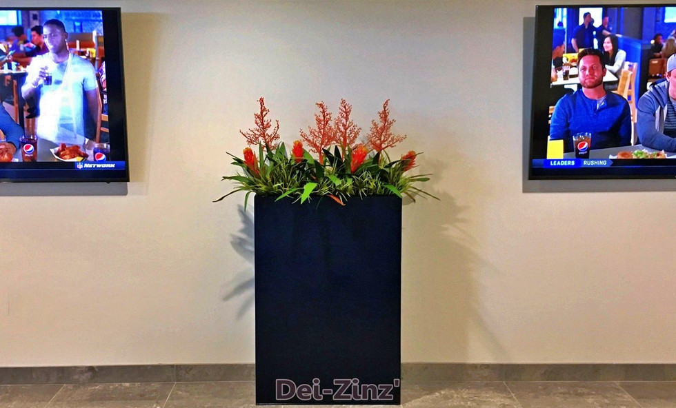 Chapman-waiting-area-planter-with-bromeliads