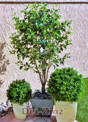small outdoor artificial ficus tree