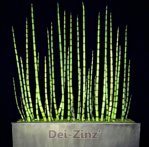 6-foot artificial snake grass sanseveria
