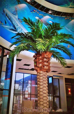 16-foot phoenix palm in daycare lobby