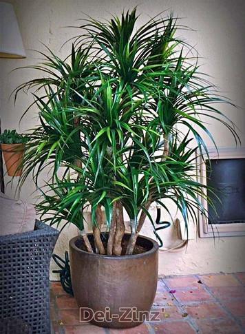 5-foot-multi-trunk-artificial-grass-plant