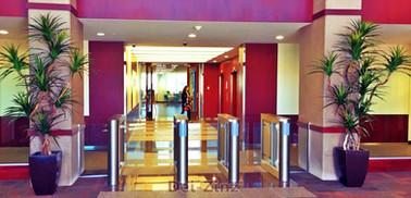 pair-of-silk-dracaenas-in-business-lobby
