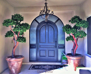 home-entry-with-outdoor-boxwood-pom-pom-trees
