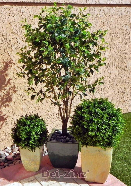 faux-ficus-patio-tree-with-boxwood-plants