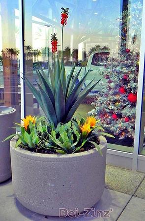 artificial-succulent-plants-at-Big2_edit