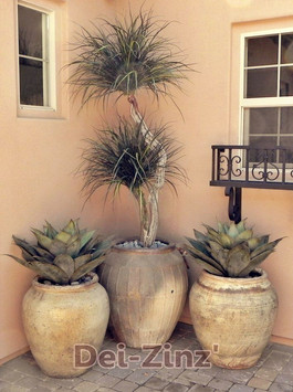 artificial artichoke agave succulents