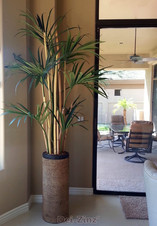 silk-kentia-palm-with-bamboo-at-residence-patio-door