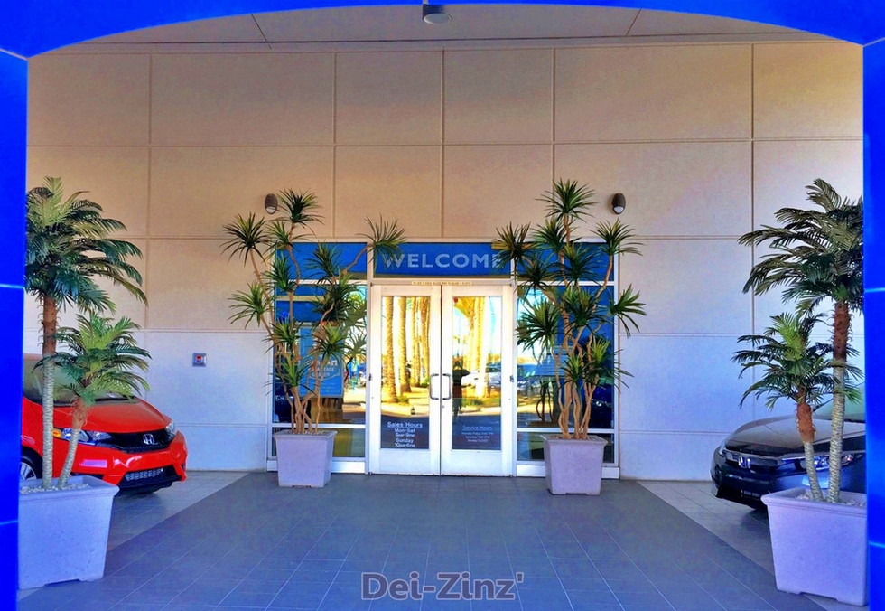silk-trees-welcome-AutoNation-visitors