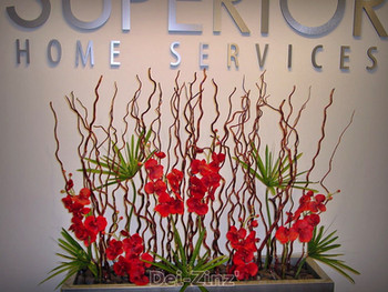 red-orchid-arrangement-Superior-Homes