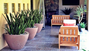 large-patio-planters-with-fake-sanseveria