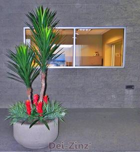 BIG-2-Toyota-artificial-yucca-tree