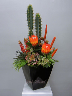 showy succulent arrangement