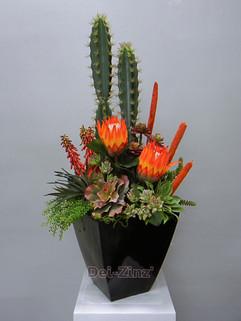 showy succulent arrangement