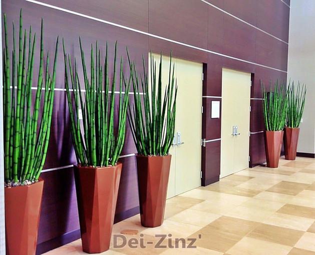 Sheraton Mesa hotel artificial snake grass
