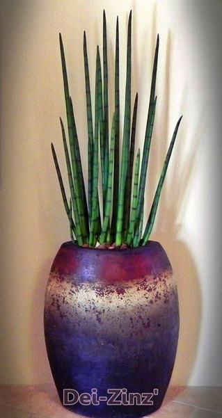artificial-snake-plant