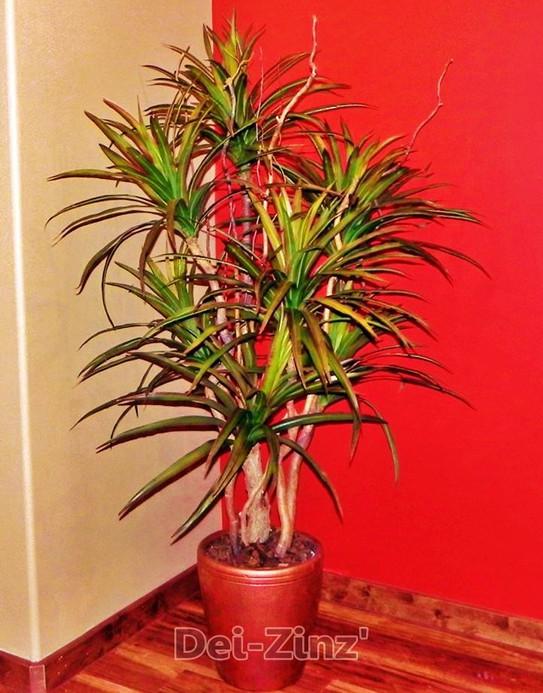 faux-dracaena-marginata-on-curly-willow
