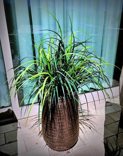 outdoor-artificial-liriope-in-bullet-planter