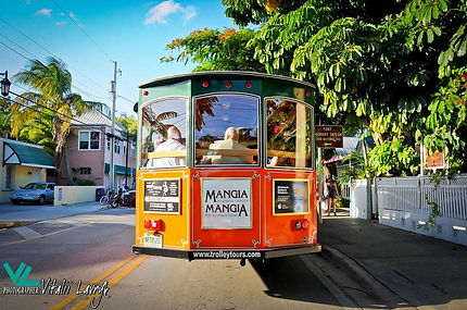 Wedding Trolley is perfect for large groups, guided tour, nice views, easy transfer