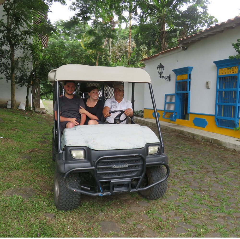 Chouette chauffeur, Colombie