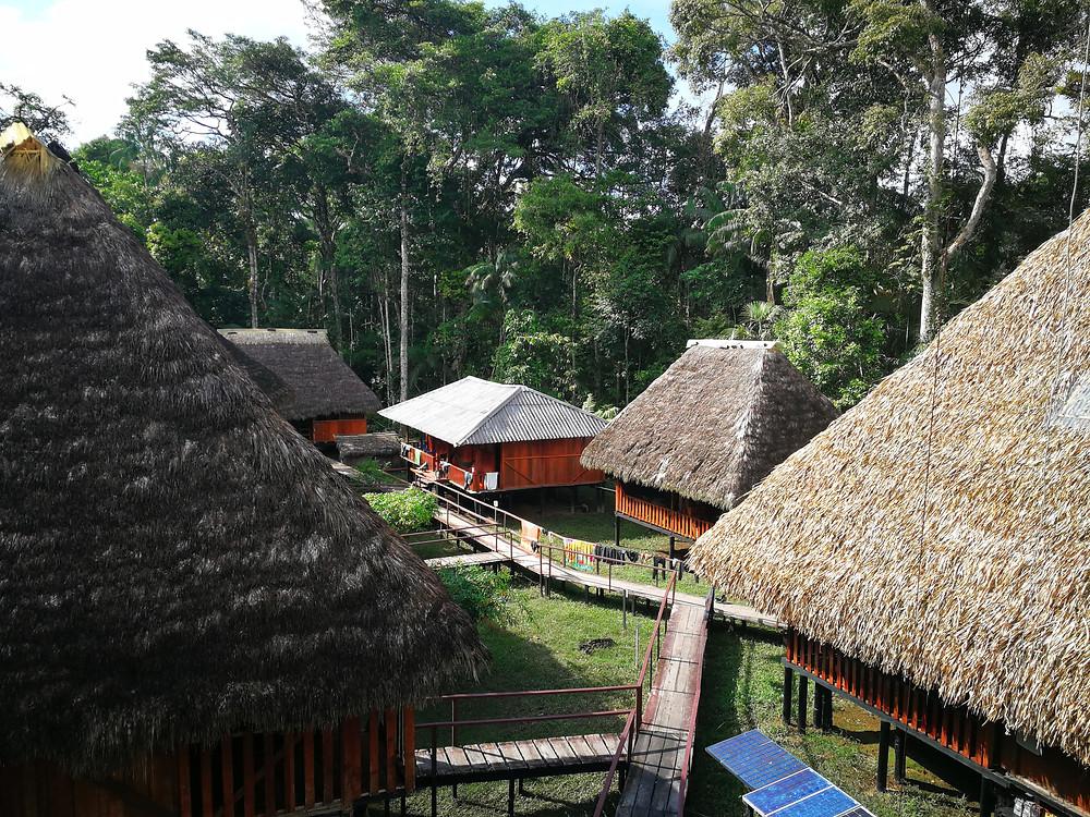 Lodge Cuyabeno, Amazonie, Equateur